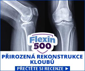 Flexin500 - kolena